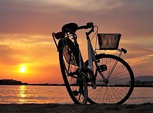 Boot, Fahrrad oder Auto?